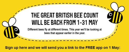 Great British Bee Count - sign up