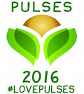 year of the pulse logo