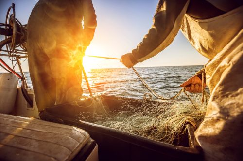 Fishers and fishing nets