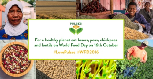 For a healthy planet eat beans, peas, chickpeas and lentils on World Food Day 16th October