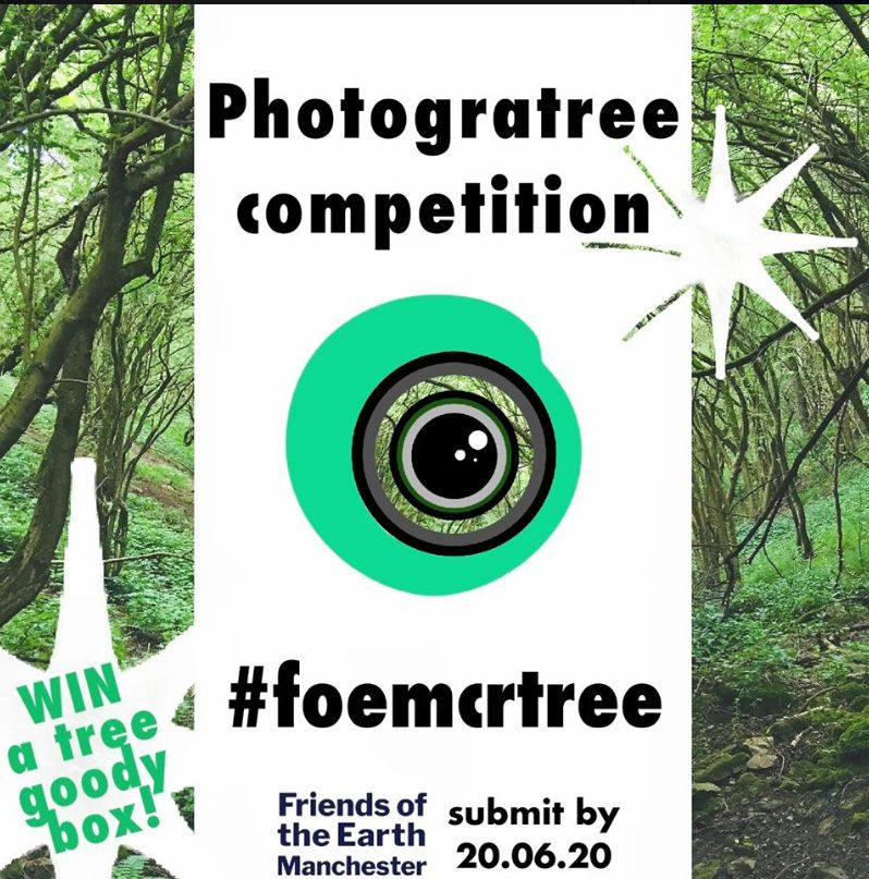 Photogratree-competition